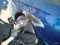 BMW 335iカブリオレ損傷部分